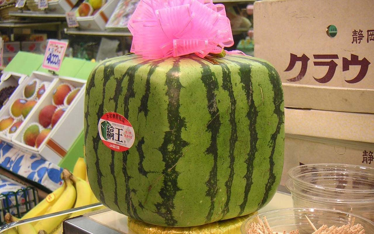 watermelon, square, refrigerator, foods, food facts
