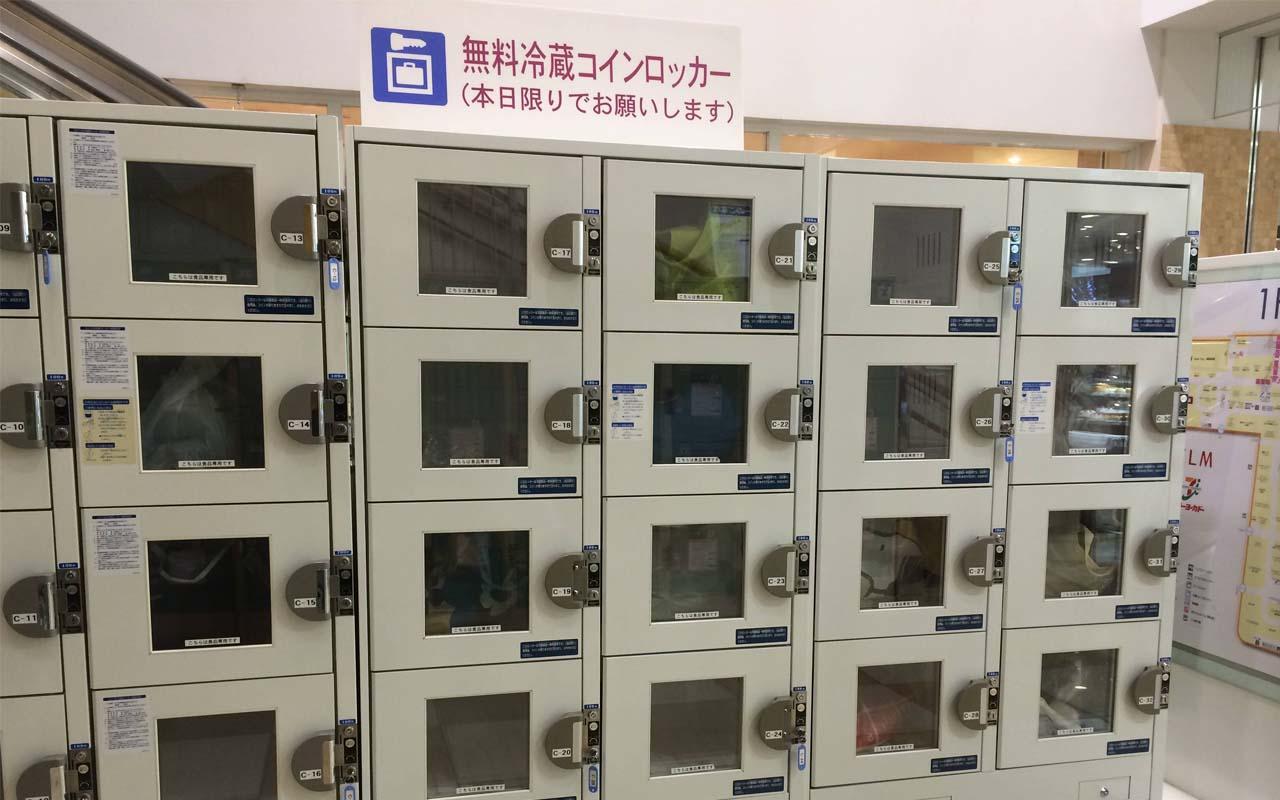 refrigerator, shopping, travel, Japanese, facts