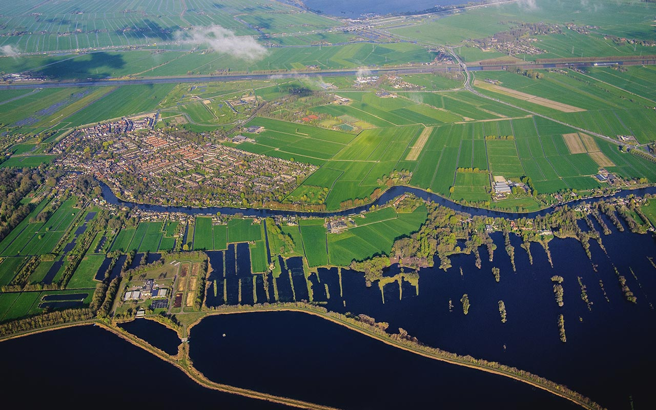 Amsterdam, agriculture, horticulture, farming, community, city, life