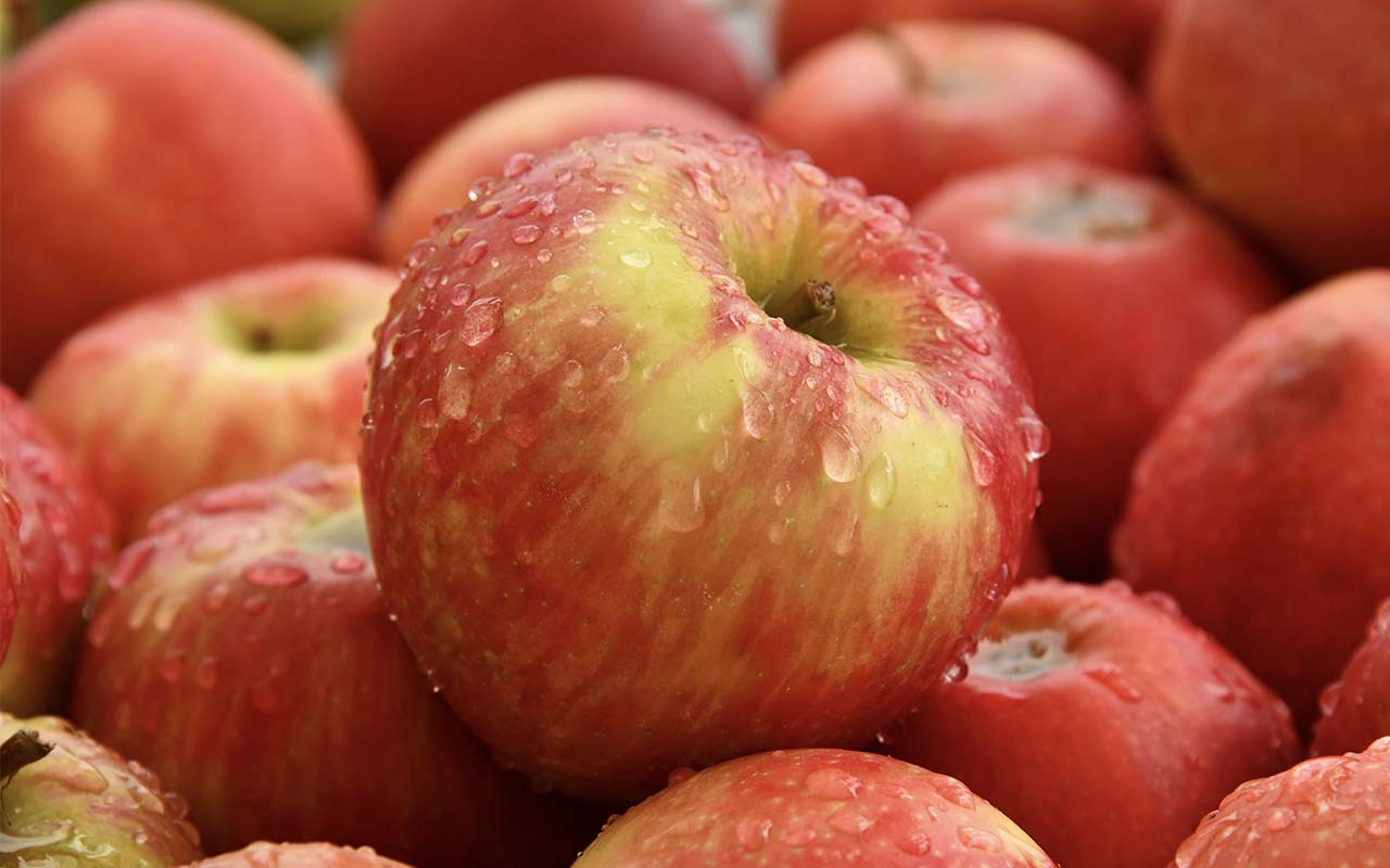 apples, hungrier, facts, nature, foods, life, lifestyle
