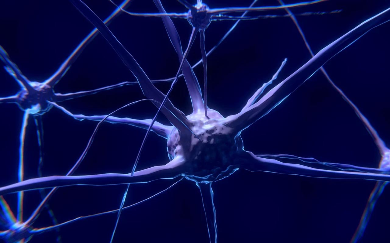 brain, neurons, signals, speed, lightning fast, science, human body,