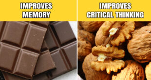 snacking, chocolate, foods, walnuts, mid day slump, energy, women, men
